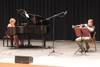 La versió per tenora i piano és instrumental