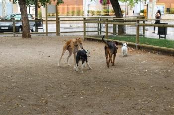 Obertura espai per gossos 1