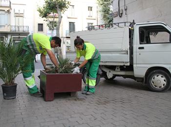 L'equip de treball es dedica a la neteja i manteniment de les jardineres
