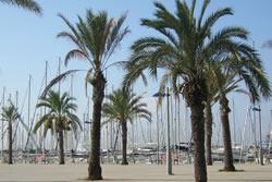 Plaça del Port