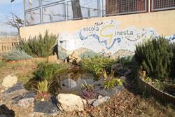 Aquest és l'espai de biodiversitat que s'ha creat al pati de l'escola