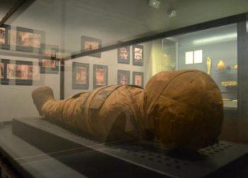 La mòmia Nessi forma part de la col·lecció egípcia del Balaguer