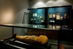 Sala egípcia del Museu Balaguer