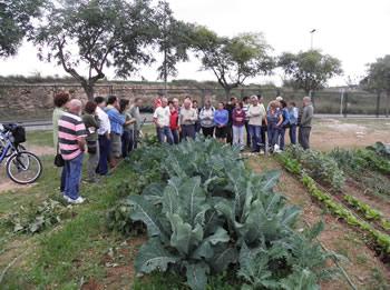 Els parcel·listes rebran formació en horticultura ecològica