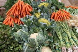 Les fruites i verdures tornen a ser protagonistes pels volts de Sant Isidre, patró de la pagesia