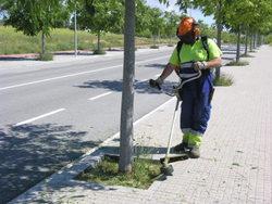 Els operaris treballaven aquest matí eliminant les herbes dels escocells a La Carrerada