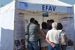 EFAV_Festival