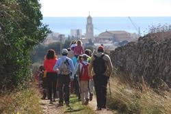 La caminada permet coneixer l'entorn natural més proper