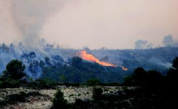 Incendi forestal 2012