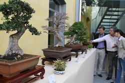 Un instant de la visita dels regidors a la mostra
