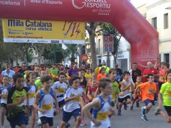 Milla Catalana - categoria cadells