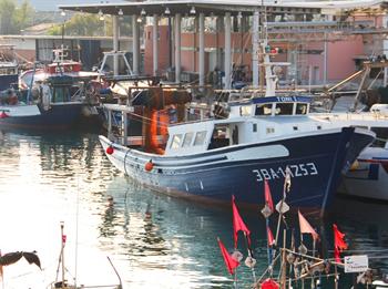 El Port de Vilanova, un dels més importants de Catalunya, forma part del recorregut 'Racons de mar'