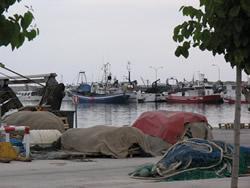 Dàrsena pesquera del port de VNG