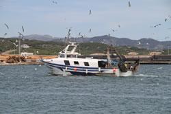 La programació del CUM potencia l'àmbit marí i nàutic amb diverses activitats