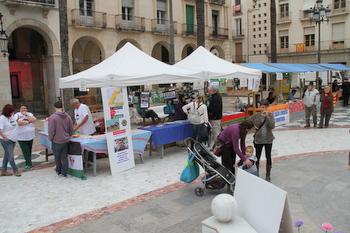 La mostra d'entitats es va fer a la plaça de la Vila