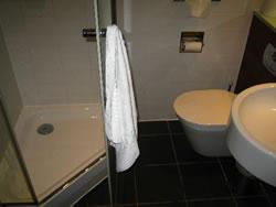 Els qui ho vulguin podran substituir la banyera pel plat de dutxa