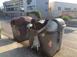 Sant Joan 2015, contenidor a 250