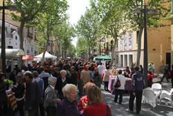 La rambla de Vilanova ha aplegat més d'un centenar de parades de roses i llibres
