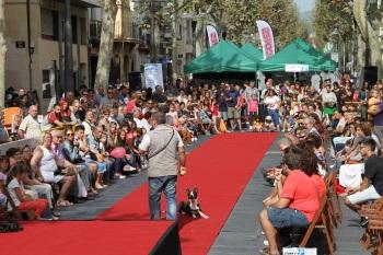 La Festa de l'Animal inclou desfilades i exhibicions