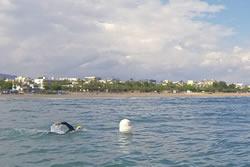 Canal de natació a la platja de Ribes Roges