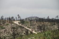 Els guaites i vigilants forestals fan diverses rutes per prevenir i detectar incendis per tot el terme municipal de VNG