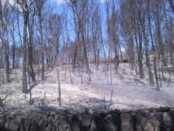 L'incendi va cremar més de 636 hectàrees dels parcs naturals del Foix i del Garraf
