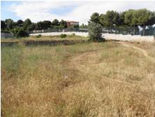 Alguns terrenys municipals ja s'han incorporat al cens per elaborar un banc de terres susceptible d'acollir horts socials