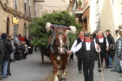 La tradicional celebració dels Tres Tombs comportarà afectacions en el trànsit de la ciutat dijous al matí