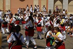 La Comissió de Protocol de la Festa Major vetlla per les cercaviles i actes tradicionals
